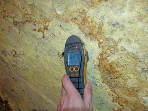 Lynwoods Building Consultancy Survey Damp