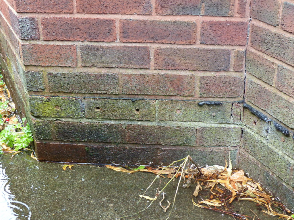 Lynwoods Building Consultancy Survey Defect Damp Course