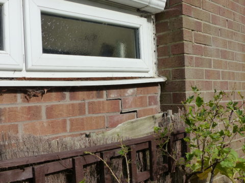 Building Survey Defect Subsidence