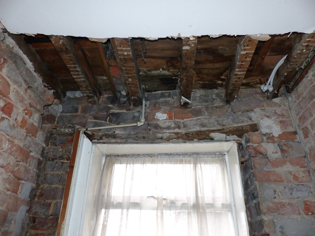 Lynwoods Building Consultancy Timber Decay